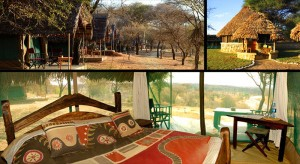 Tarangire Safari Lodge - Tarangire National Park