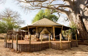 Sanctuary Swala Camp - Tarangire National Park