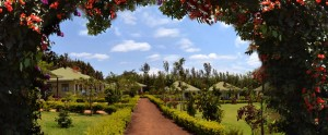 Country Lodge - Karatu (and Near Ngorongoro Area)