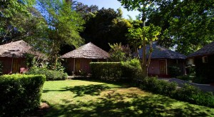 Ilboru Safari Lodge - Arusha