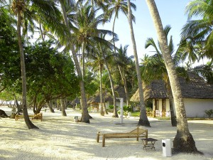z.hotel-beach-svg1